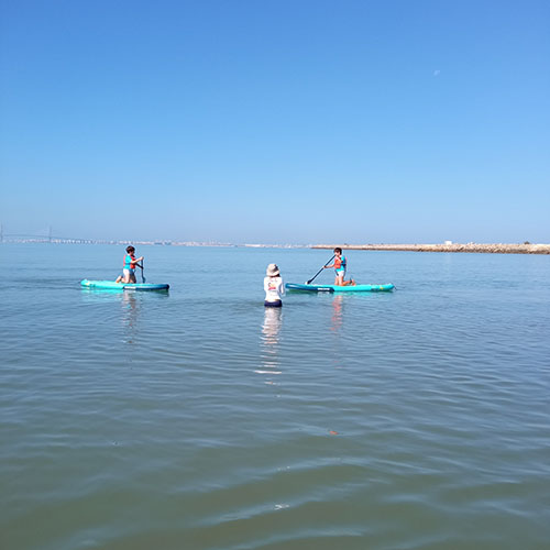 etapas de los cursos de paddle surf